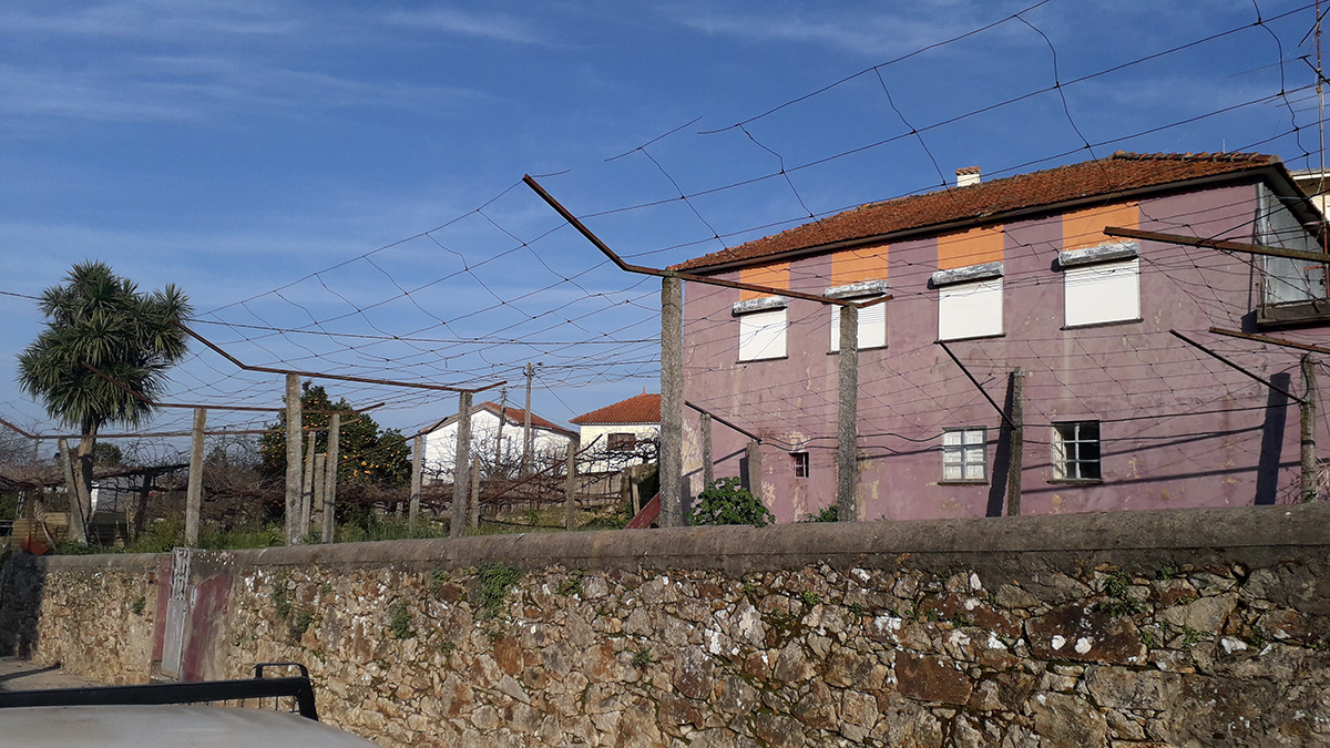 Moradia p/ restauro c/ 700m2 terreno, Guidões