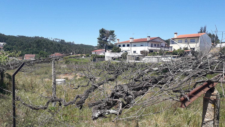 Terreno p/ construção com 500 m2, Alvarelhos