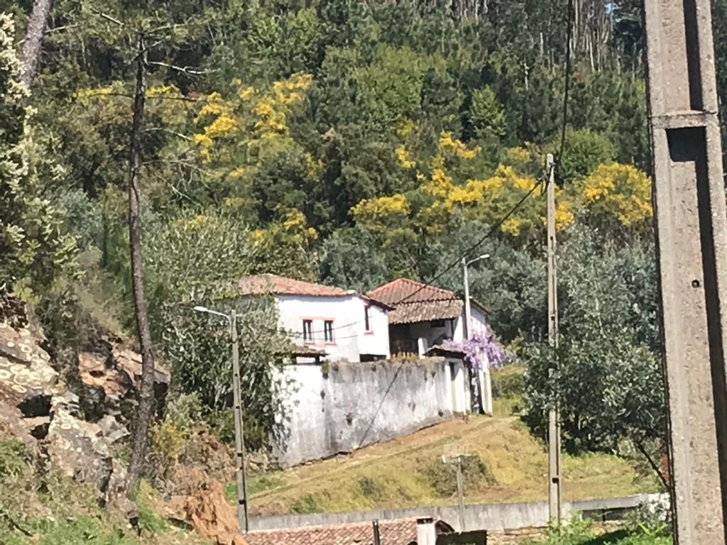Casa com 15000m2 ideal para quinta – Vila Nova de Poiares